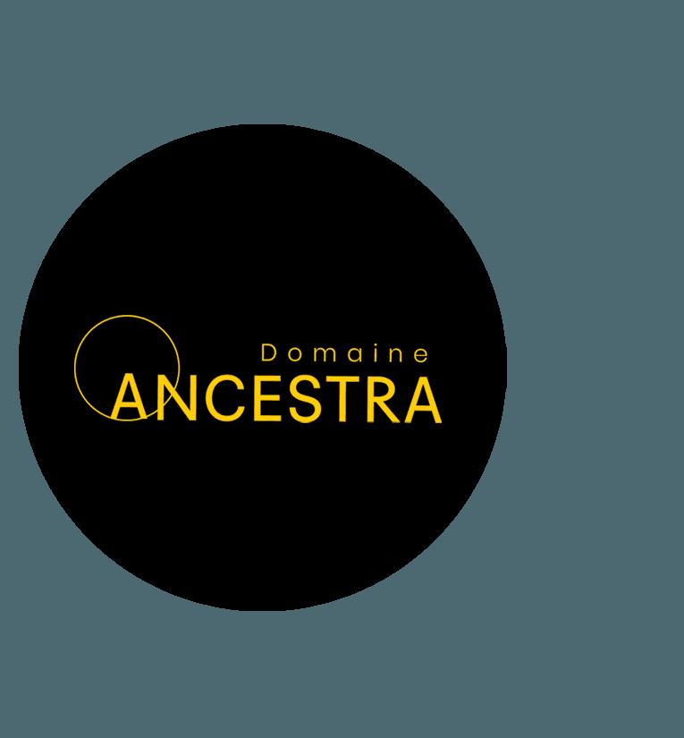 Domaine ancestra, projet de maison de ville à Mirabel